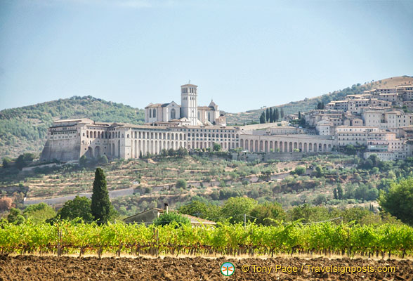 View of Basilica di San Francesco and the Sacro Convento