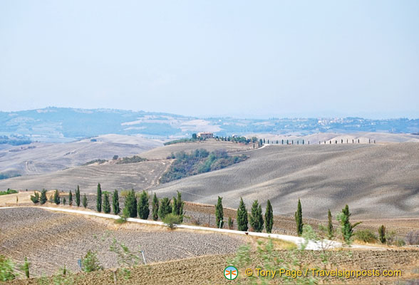 Hilly countryside of Val d'Orcia