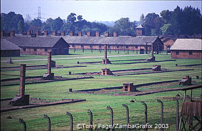 Remains of wooden barracks at Auschwitz II-Birkenau site