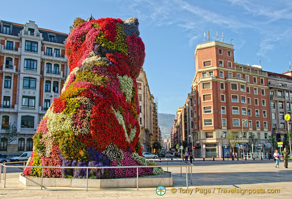 Guggenheim Bilbao: Jeff Koons' puppy is a permanent installation outside the museum