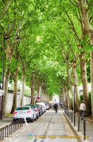 Montparnasse cemetery is one of the largest green space in Paris