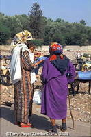 Ourika Valley and a Berber Market
