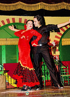 Seville Palacio Andaluz - Home of Flamenco